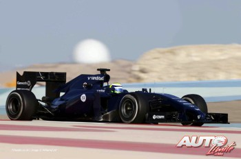 03_Felipe-Massa_Williams-FW36_Test-Bahrein-2014