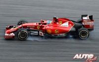08_Fernando-Alonso_GP-Malasia-2014