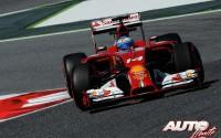 07_Fernando-Alonso_GP-Espana-2014