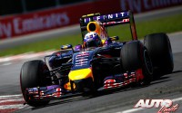 02_Daniel-Ricciardo_Red-Bull-RB10_GP-Canada-2014