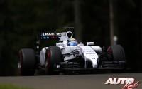 11_Felipe-Massa_GP-Austria-2014