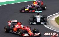 09_Fernando-Alonso_GP-Hungria-2014