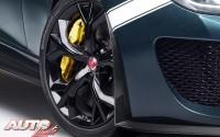 Jaguar F-Type Project 7 – Técnicas