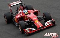 05_Fernando-Alonso_Ferrari_GP-Italia-2014