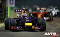 12_Daniel-Ricciardo_GP-Singapur-2014