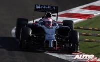 09_Jenson-Button_GP-Rusia-2014