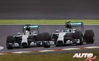12_Nico-Rosberg_GP-Japon-2014