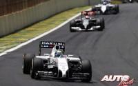 05_Felipe-Massa_GP-Brasil-2014