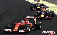 06_Fernando-Alonso_GP-Brasil-2014