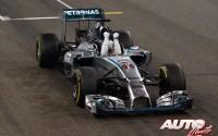 14_Lewis-Hamilton_GP-Abu-Dhabi-2014
