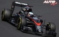 12_Fernando-Alonso_GP-Hungria-2015
