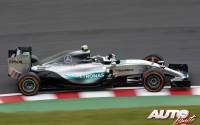 06_Nico-Rosberg_GP-Japon-2015