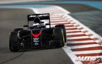 09_Fernando-Alonso_GP-Abu-Dhabi-2015