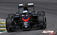 13_Fernando-Alonso_GP-Brasil-2015