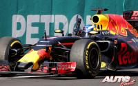 14_Daniel-Ricciardo_GP-Malasia-2016