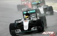 En el nombre de Ayrton. GP de Brasil 2016