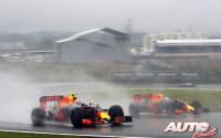 06_Max-Verstappen_GP-Brasil-2016