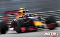 08_Max-Verstappen_GP-Abu-Dhabi-2016