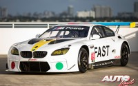 BMW Art Car Collection – BMW M6 GTLM (F13)