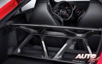 22_Audi-Sport-Performance-Parts_Audi-TT-RS