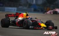 06_Max-Verstappen_Red-Bull_GP-Abu-Dhabi-2017