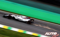 11_Felipe-Massa_Williams_GP-Brasil-2017