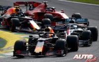 Un león llamado Max. GP de Brasil 2019