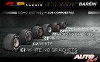 Compuestos de neumáticos disponibles durante los test de pretemporada realizados en el Circuito Sakhir de Bahréin.